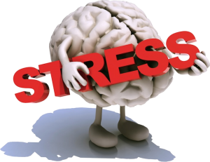 stress-web